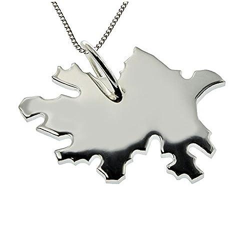 e4b4ae1c0821 Outlet Azerbaiyán Colgante 925  con cadena de plata (1