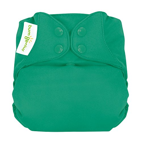 bumGenius Elemental 3.0 All-In-One One-Size Cloth Diaper with Organic Cotton (Hummingbird) (Cotton Organic Cloth Diaper)