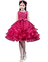 dressfan Girl Dress Kids Long Party Wedding Princess Dress Tulle Lace