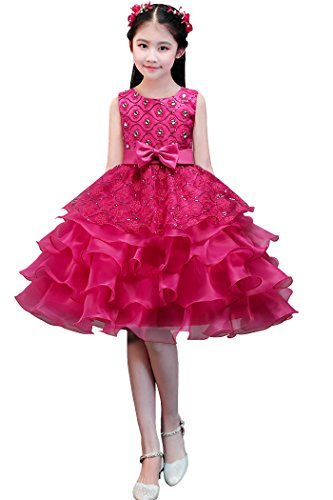 (dressfan Princess Party Wedding Embroidered Tulle Dresses Flower Girls Dress Red )