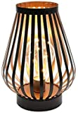 JHY DESIGN Metal Cage LED Lantern Battery Powered,8.7in Cordless Accent Light with LED Edsion Style Bulb.Great for…
