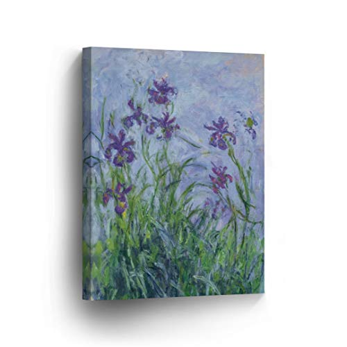 Iris Mauves by Claude Monet Canvas Wall Art Canvas Print Famous Art Painting Reproduction Fine Art Oil Paintings Modern Art Home Decor Ready to Hang-%100 Made in The USA- 12x8 ()