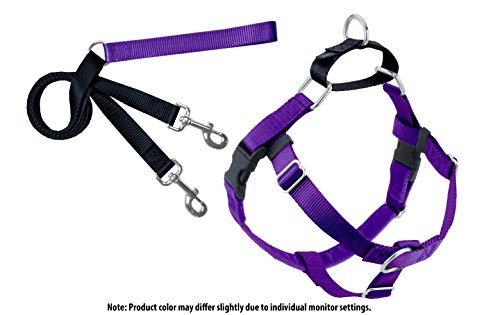 2 Hounds Design Freedom No-Pull Dog Harness with Leash, Medium, 5/8-Inch Wide, Purple