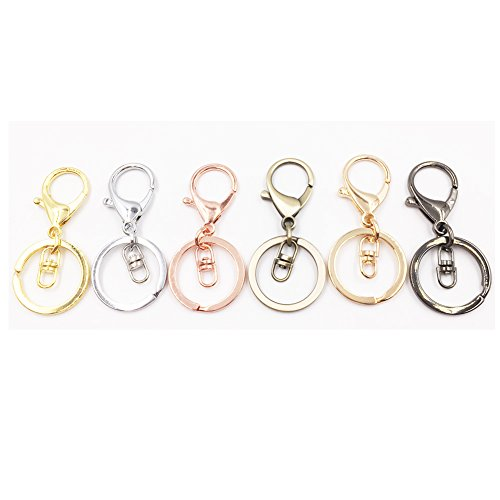 Dcatcher 6 Assorted Colours Metal Snap Hook Lobster Clasps Lanyard with Keyring for Keychain DIY Bags, Pack of ()