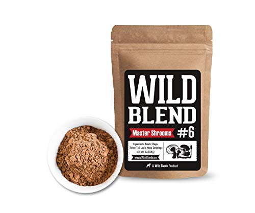 Wild Mushroom Extract Blend, Reishi, Chaga, Cordyceps, Turkey Tail, Lion s Mane Supplement for Smoothies, Shakes, Coffee Small-Batch Nootropic Mental Performance Master Blend 8 oz