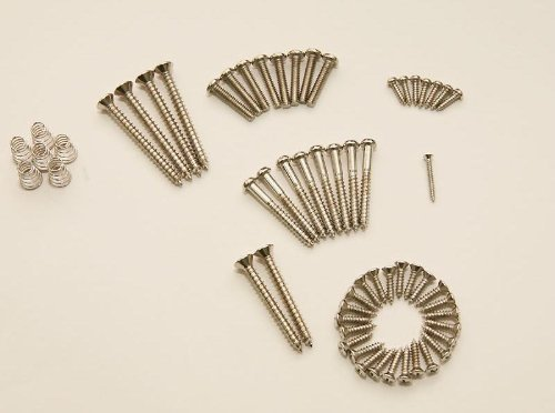 Replacement Fender Screws (DiMarzio Standard Strat Screw Kit : All Screws to Assemble a Standard Strat®)