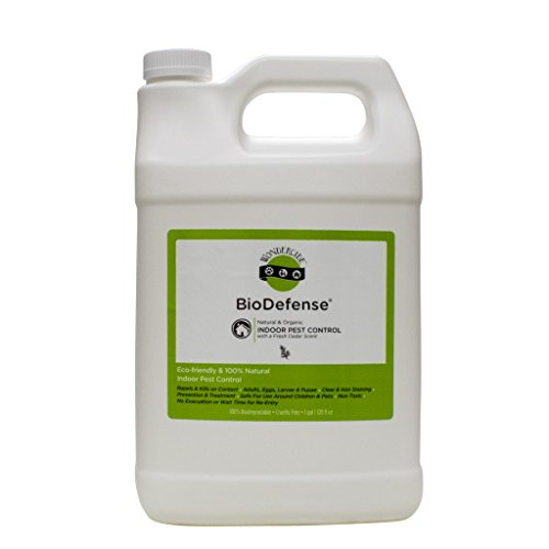 Natural Bug Killer & Indoor Home Pest Control Spray | Works Fast! Kill & Repel Ant, Fly, Flea, Moth, Roach, Mite, Spider, Fruit Fly & More Adults & Eggs | 128oz/1 Gallon Cedar Scent