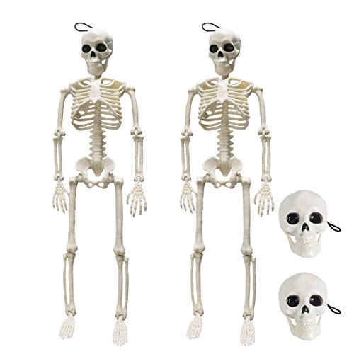 Max Fun 15.74'' Plastic Halloween Skeleton(2 PACK) - Full Body Halloween Skeleton with 2 Skull Accessories for Halloween Decoration.