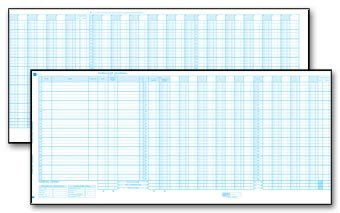 Accounts Payable Journals (EGP Accounts Payable Journal Sheet)