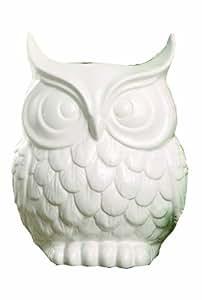 Creative Co-op Glee Dolomite Owl Vase, 9-Inch, White