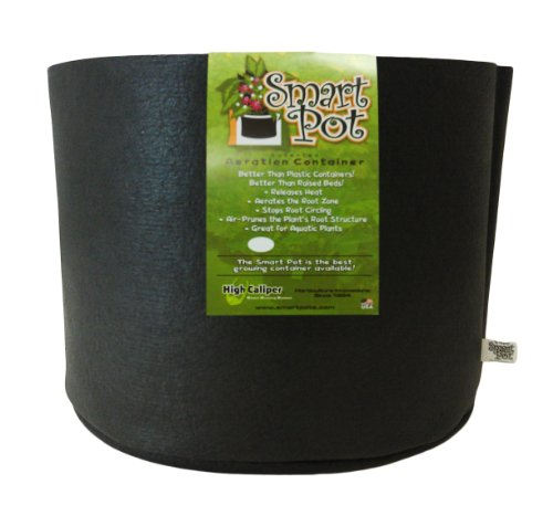 Plastic Round Planter (Smart Pots 10-Gallon Smart Pot Soft-Sided Container, Black)