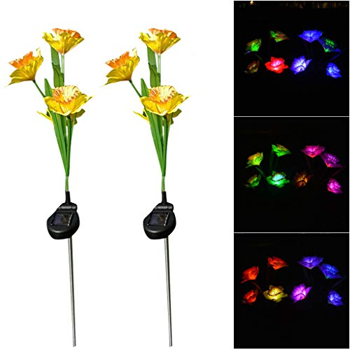 - Gotian Solar Garden Lights Multi-Color Daffodil Flowers Light Outdoor Decoration 2 Pcs Lights Artificial Flowers Decro The Street,Your House,Gifts for Your Friends (B)