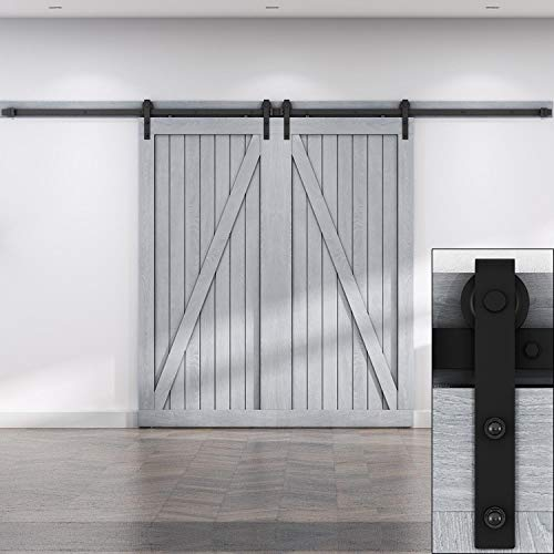 EaseLife 10 Foot Double Sliding Barn Door Hardware Track Kit-Heavy Duty | DIY Easy Install | Ultra Smooth Quiet | 10 Foot Rail Double Kit (Standard Hanger)