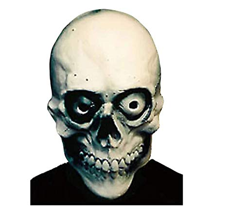 Halloween Mask Ghost Rider ()