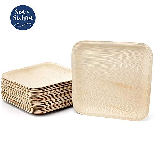 Palm Leaf Bamboo Plates | Disposable Plates | Compostable Plates | Biodegradable Plates | Dinner Sized Plates | Set of (25) 10-Inch, by SEA TO SIERRA