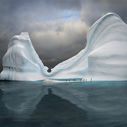 startonight-canvas-wall-art-penguins-on-the-iceberg-at-swimming-pool-winter-usa-design-for-home-deco