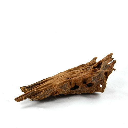 Mangrovenwurzel für Aquarien und Terrarien 12 - 15 cm Wurzel Mangroven