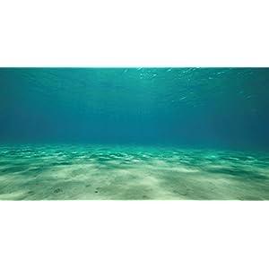 """SPORN Aquarium Background, Static Cling,  Ocean Floor 36"""" x 18"""" 70"""