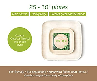 "Palm Leaf Plates - twenty five/10"" PLUS five/6"" Graduation Party Plates for Entertaining, Disposable or Catering Plates or Palm Restaurant Square Plates"