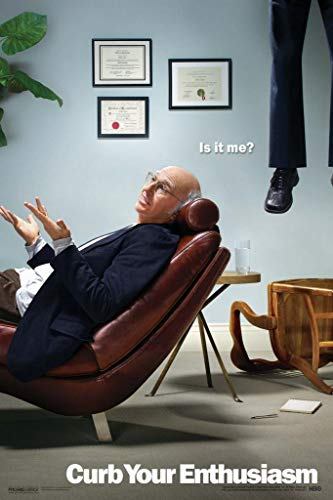 Pyramid America Laminated Curb Your Enthusiasm Larry David is It Me HBO Comedy Television TV Series Sign Poster 12x18 inch