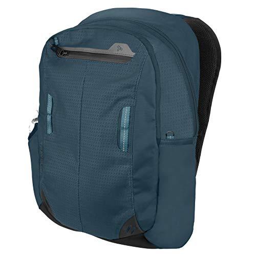 41c%2BQ1Y9T1L - Travelon Anti-Theft Active Daypack, Charcoal