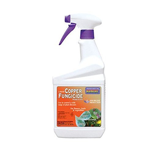 Pumpkin Rot Hands - BONIDE PRODUCTS 775 Ready-to-Use Copper Fungicide,