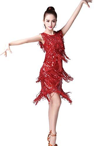 ZLTdream Ladies'Latin Tango Salsa ChaCha Ballroom Dance Swing Rumba Dress Red ()