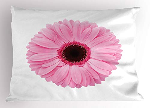 """Ambesonne Pink and White Pillow Sham, Fresh Gerber Daisy Garden Plants of Spring Growth Single Flower Image, Decorative Standard King Size Printed Pillowcase, 36"""" X 20"""", Pale Pink"""