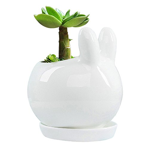 (GeLive White Bunny Rabbit Succulent Planter Fun Animal Plant Pot Ceramic Decorative Window Box with Tray Saucer)