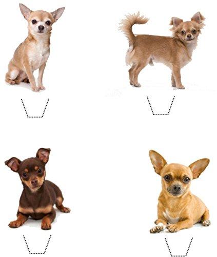 E (chiwawa), diseño de chihuahua perro mezcla 12 obleas comestibles standup moldes de