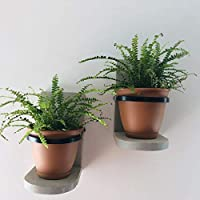 Hanging Wall Planter Wooden Hand Crafted Set of 2, Choice of Stain Color