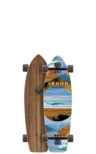 """Price comparison product image Arbor Rally Photo Complete Skateboard, Nocturnal, 30.50"""" L x 8.90"""" W x 20"""" WB"""