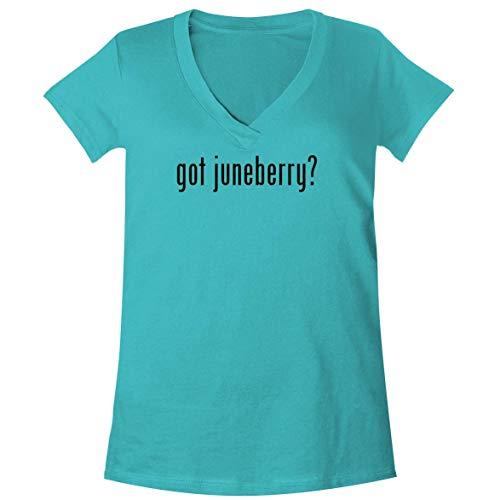 The Town Butler got juneberry? - A Soft & Comfortable Women's V-Neck T-Shirt, Aqua, Medium (Bright Starts Juneberry Delight Walk A Bout)