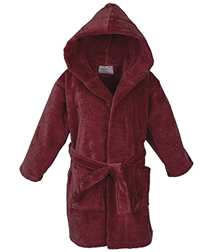 Star Boys 100% Cotton Velour Hooded Terry Robe Bathrobe (3-4 Years, (Classic Terry Robe)