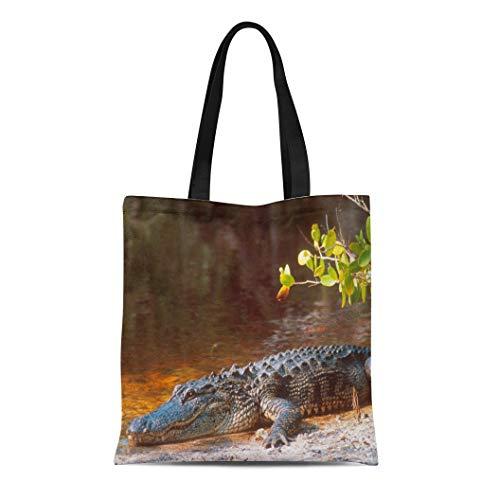 Semtomn Cotton Line Canvas Tote Bag Everglade American Alligator at the J N National Park Reusable Handbag Shoulder Grocery Shopping Bags ()