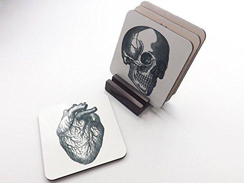 Anatomy Coasters hardboard cork back wood stand medical student teacher anatomical heart skull brain