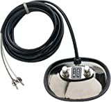 Fender Accessories 099-4051-000 2-BUTTON VINTAGE-STYLE FOOTSWITCH (RCA JACKS)