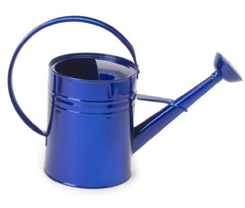 How To Paint Galvanized Steel Watering Can