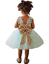 Girl Tulle Embroidered Elegant Tutu Backless Dress for Party