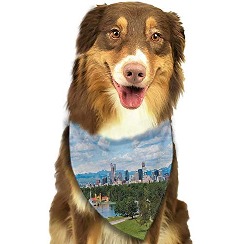 Creative Family pet Scarf Urban City Park at Denver Colorado Downtown Tree and Architecture Sunny Panorama W27.5 xL12 Scarf for Small and Medium Dogs and ()