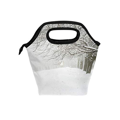 - Blizzard And Snow Lunch Bag Reusable Tote Bag Insulated Lunch Box For Boys, Girls, Kids, Adults, Office, School