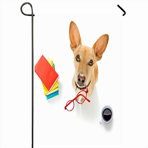 Ahawoso Seasonal Garden Flag 12x18 Inches Office Antique Chihuahua Dog Glasses Secretary Operator Message Red Sports Recreation Assistance Home Decorative Outdoor Double Sided House Yard Sign]()