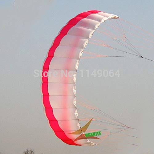 WANGCHAOLI Kite 2.5sqm Quad line Power Kite surf with Handle line Kite parafoil Kite Board Ripstop Nylon Kite Sports