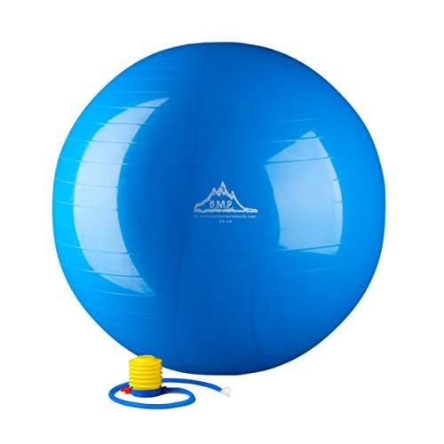 Black Mountain Products Static Strength Exercise Stability Ball with Pump, 2000...