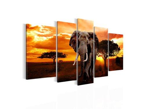 Bilder-Kunstdrucke-Prestigeart-0012516-0012527-0012532-Bild-auf-Vlies-Leinwand-African-Sunset-110-x-60-cm-und-170-x-100-cm-und-200-x-100-cm-5-Teile