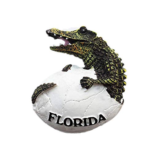 - Crocodile of Florida USA 3D Fridge Magnet Souvenir Gift, Home & Kitchen Decoration Magnetic Sticker Florida USA Refrigerator Magnet Collection