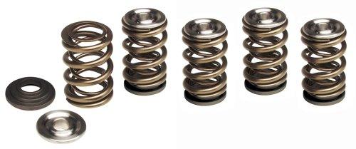 Hot Cams VSK4003 Gold Series High Performance Valve Spring Kit ()