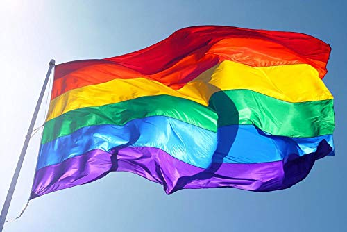 MPS Gay Pride Rainbow Printed Flag 3 x 5 Ft, Polyester, Fade Resistant ()