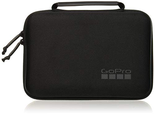 GoPro Casey (Camera + Mounts + Accessories Case) (GoPro Official Accessory)