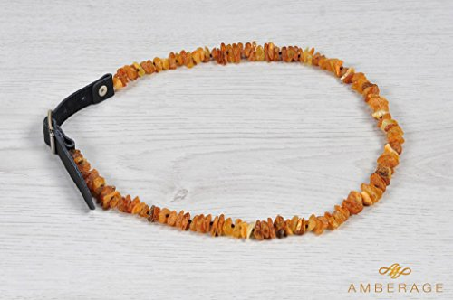 Amberage Natural Baltic Amber Necklaces - Jewelry for Dogs with Natural Leather Strap/Perfect Gift for Pet Lowers! Made by 6 sizes (L 44-52cm) by Amberage